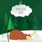Cartão bonito do urso Imagem de Stock