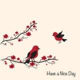 Cartão bonito dos pássaros Foto de Stock