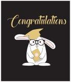 Cartão bonito/fundo da graduação Imagens de Stock Royalty Free