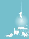 Cartão branco brincalhão dos gatos Imagens de Stock Royalty Free