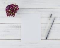 Cartão branco vazio com as duas penas pretas Foto de Stock Royalty Free