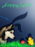 Cartão cômico para a Páscoa Fotografia de Stock
