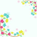 Cartão colorido do quadro de sakura do vetor Foto de Stock Royalty Free
