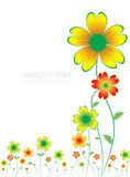 Cartão colorido floral ilustração royalty free