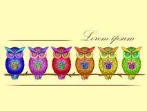 Cartão com as corujas brilhantes, coloridas ilustração do vetor