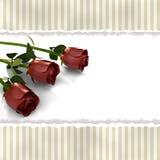 Cartão com as flores cor-de-rosa no estilo retro Imagens de Stock Royalty Free