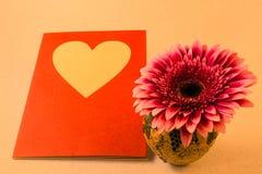 Cartão com flor do gerbera em um vaso pequeno para a sagacidade das felicitações Fotografia de Stock Royalty Free