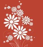 Cartão com flores Fotografia de Stock Royalty Free