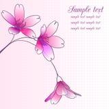 Cartão com flores Imagem de Stock Royalty Free