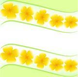 Cartão com flores amarelas Foto de Stock