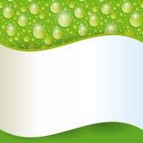 Cartão com gota verde da água Vetor Fotografia de Stock