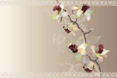 Cartão com orquídea imagens de stock