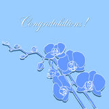Cartão com orquídeas Imagem de Stock