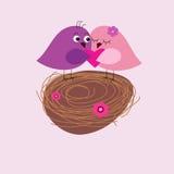 Cartão com os pássaros bonitos no ninho Foto de Stock