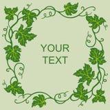 Cartão com quadro floral da vinha Fotografia de Stock