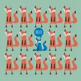 Cartão com raposas Imagem de Stock