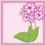 Cartão com um ramalhete Fotografia de Stock Royalty Free