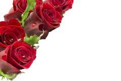 Cartão com um ramalhete das rosas Imagens de Stock