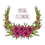Cartão cor-de-rosa para cumprimentos, cartões da flor de sakura da mola de casamento, convites Imagem de Stock Royalty Free
