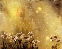 Cartão da aguarela com margaridas Fotos de Stock