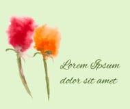 Cartão da aquarela com flores coloridas Imagens de Stock