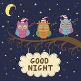 Cartão da boa noite com as corujas bonitos do sono Fotos de Stock Royalty Free