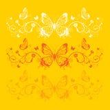 Cartão da borboleta Imagem de Stock