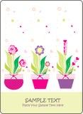 Cartão da flor Imagens de Stock