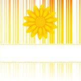 Cartão da flor Foto de Stock Royalty Free
