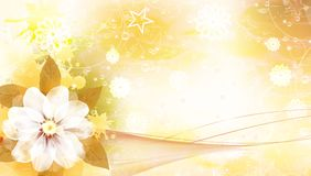 Cartão da flor Fotos de Stock Royalty Free