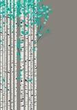Cartão da floresta de Birchwood ilustração stock