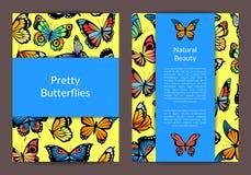 Cartão das borboletas do vetor ou ilustração decorativa do molde do inseto ilustração royalty free