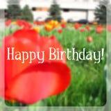 Cartão de aniversário com efeito obscuro Fotos de Stock Royalty Free