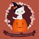 Cartão de Dia das Bruxas com o gatinho branco bonito 1 Imagem de Stock Royalty Free