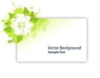 Cartão de Gree da flor Fotos de Stock Royalty Free