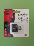 Cartão de memória de Secure Digital SD Imagem de Stock