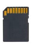 Cartão de memória preto do SD Fotos de Stock Royalty Free