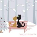 Cartão de Natal com gatos Fotografia de Stock Royalty Free