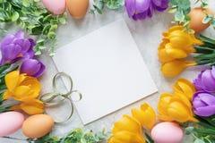 Cartão de Páscoa com flores do açafrão Imagem de Stock Royalty Free