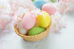 Cartão de Páscoa com ovos da páscoa e as flores cor-de-rosa foto de stock