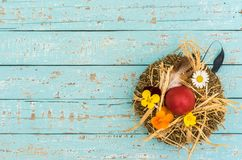 Cartão de Páscoa feliz com ninho, ovo e flores na tabela de madeira rústica, vista superior, espaço da cópia Fotos de Stock