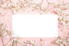 Cartão de papel vazio com as flores brancas pequenas delicadas na parte traseira do rosa fotos de stock