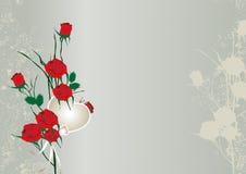 Cartão de Rosa Imagens de Stock Royalty Free