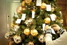 Cartão de texto do ano novo feliz na árvore Fotografia de Stock