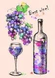 Cartão de uvas do esboço, vinho, garrafa para o projeto Foto de Stock