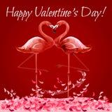 Cartão de Valentine Day com coração do amor dos flamingos ilustração do vetor