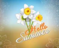 Cartão de verão do vetor olá! com flores do narciso amarelo Fotografia de Stock