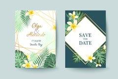 Cartão de verão Excepto a tâmara Folhas de palmeira Imagem de Stock
