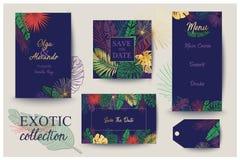 Cartão de verão Excepto a tâmara Folhas de palmeira Imagens de Stock Royalty Free