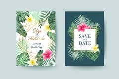 Cartão de verão Excepto a tâmara Folhas de palmeira Fotos de Stock